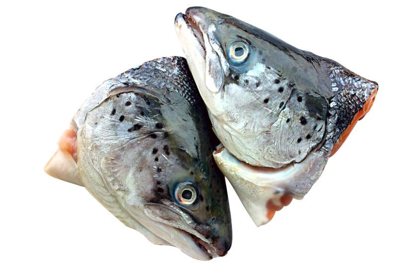 Головы лосося с/м